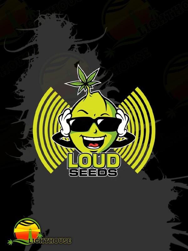 Dementia (Loud Seeds)