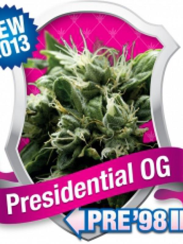 Presidential O.G Feminised Seeds