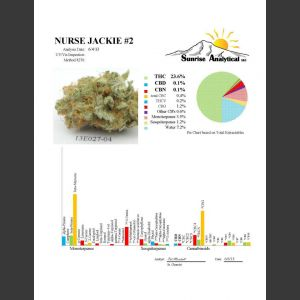 Nurse Jackie Regular Seeds