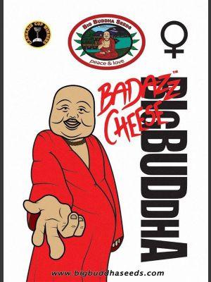Badazz Cheese Gefeminiseerde Zaden
