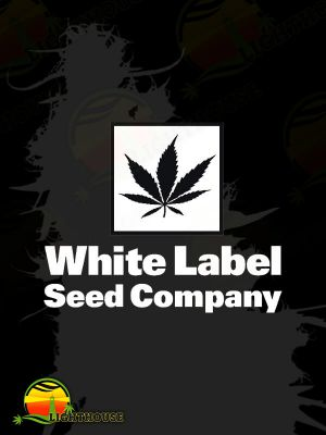 Female Mix (White Label Seed Company)