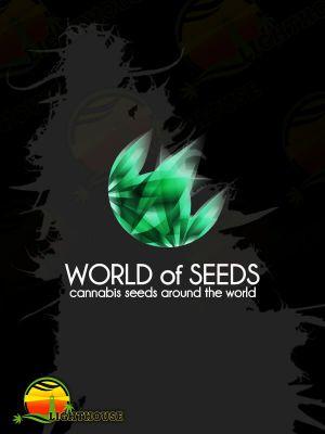 Bubba Haze Regular (World of Seeds)