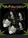 Black and White Mix Feminised Seeds