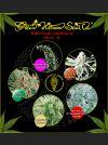 Sativa Indica Mix A Feminised Seeds