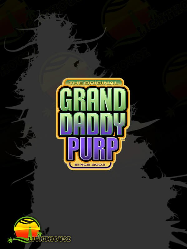 Confidential Purp (Grand Daddy Purp Genetics)