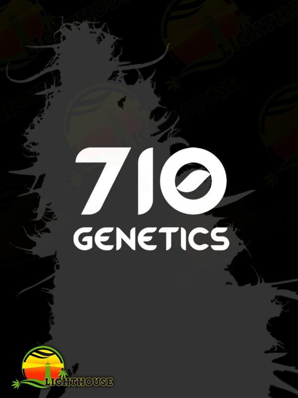C99 Haze (710 Genetics)