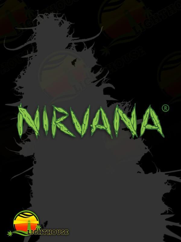 Urban Poison (Nirvana Seeds)