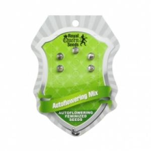 Autoflowering Mix Feminised Seeds