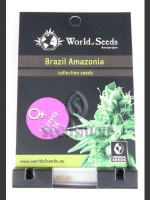 Brazil Amazonia Feminised Seeds