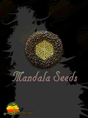 White Bhutanese (Mandala Seeds)