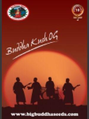 Buddha Kush OG Feminised Seeds