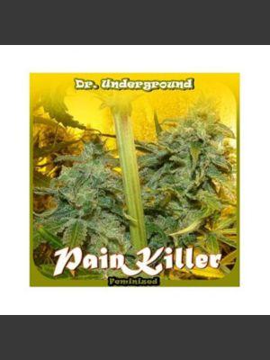 Painkiller Feminised Seeds