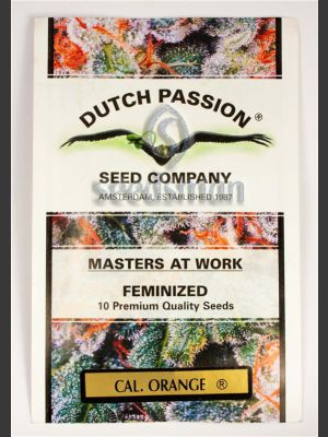 Californian Orange Feminised Seeds