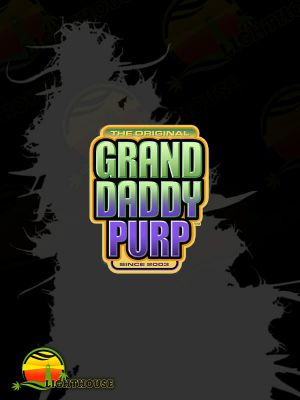 Coogies Regular (Grand Daddy Purp Genetics)