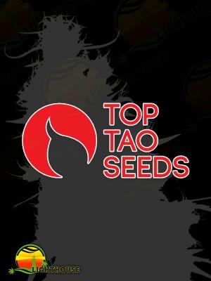 Sativa Mix Regular (Top Tao Seeds)
