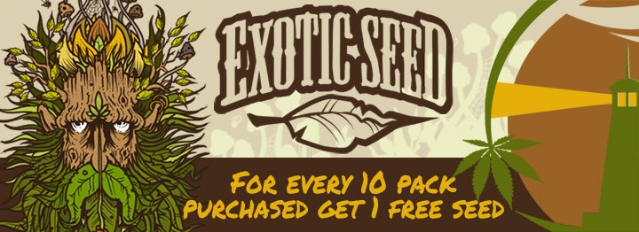 Exotic Seeds Free Fem Seed Promotion