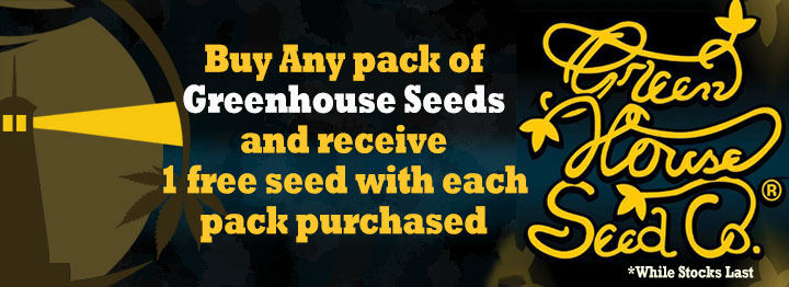 Greenhouse Seeds Free Seed Promotion