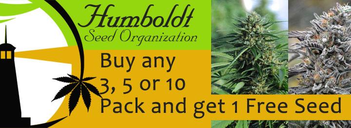 Humboldt Seeds Free Seed Promotion