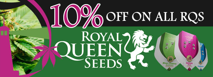 Royal Queen Seeds 33% OFF