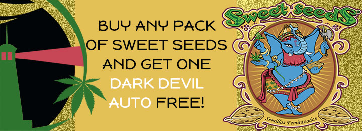Sweet Seeds Free Seed Promotion